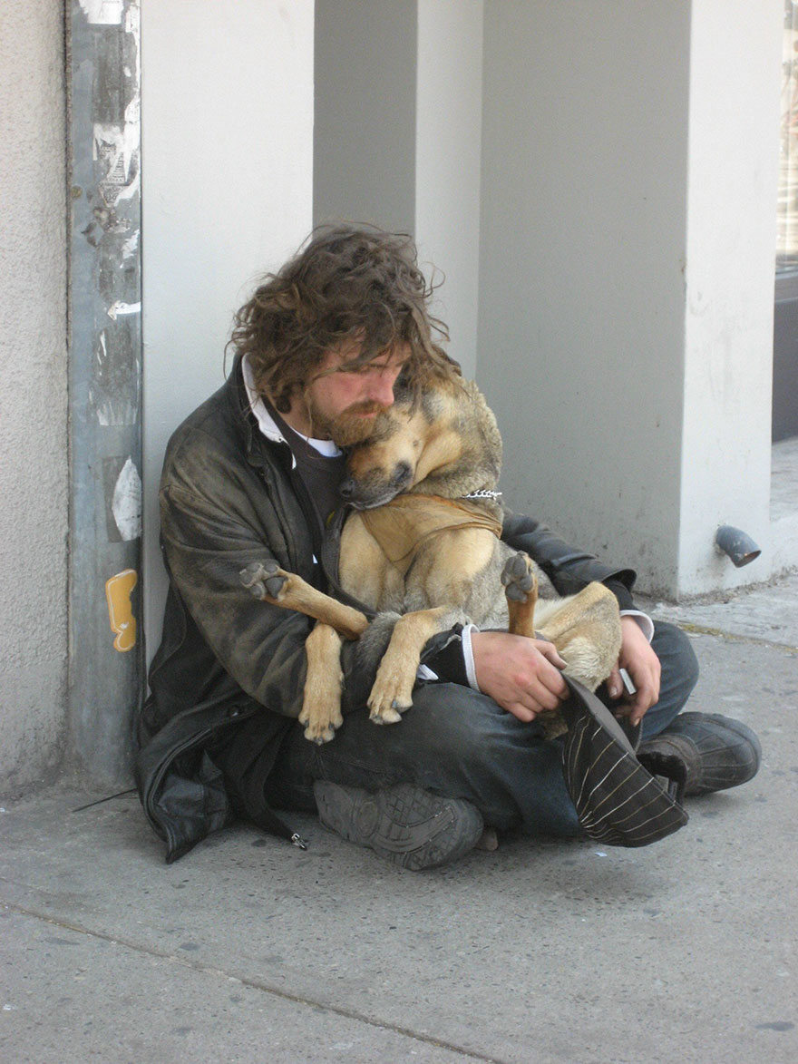 Cães amam seus donos, não importa quanto dinheiro eles tenham.. (1)