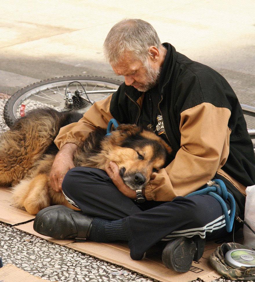 Cães amam seus donos, não importa quanto dinheiro eles tenham.. (15)