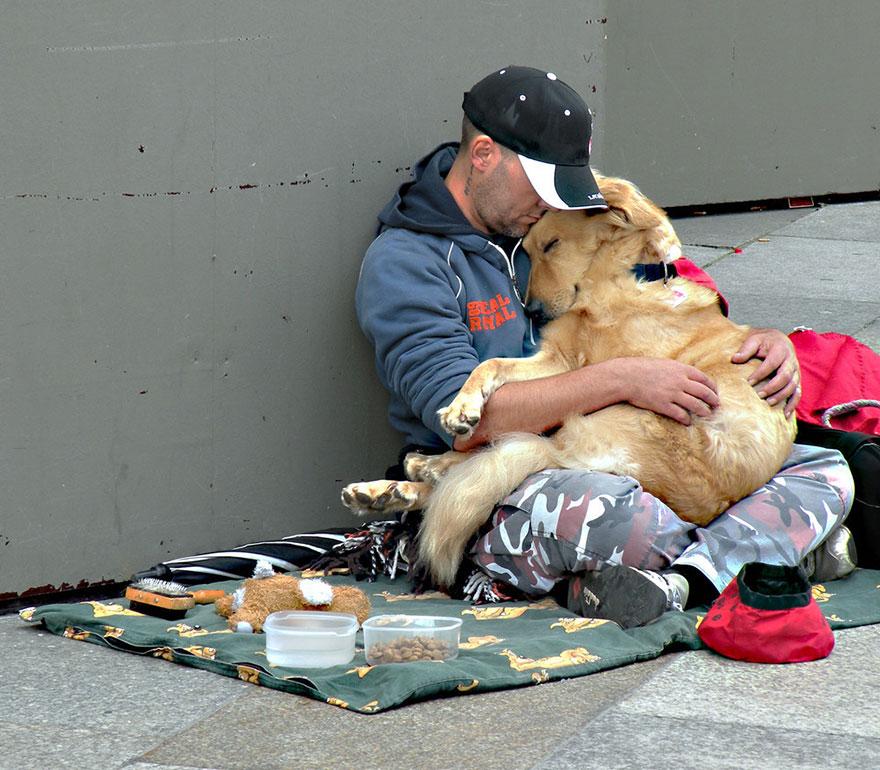 Cães amam seus donos, não importa quanto dinheiro eles tenham.. (3)