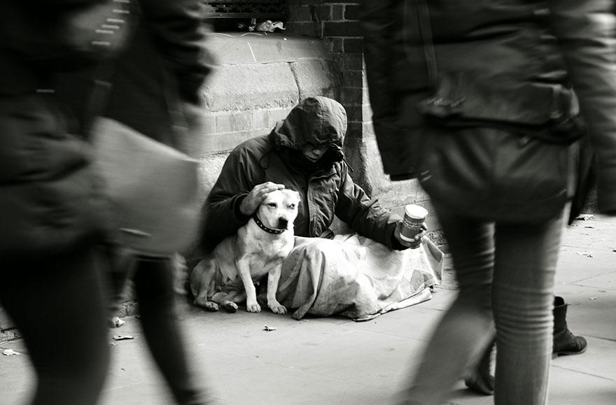 Cães amam seus donos, não importa quanto dinheiro eles tenham.. (5)