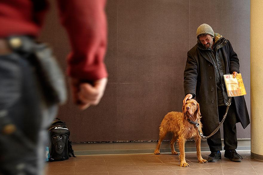 Cães amam seus donos, não importa quanto dinheiro eles tenham.. (6)
