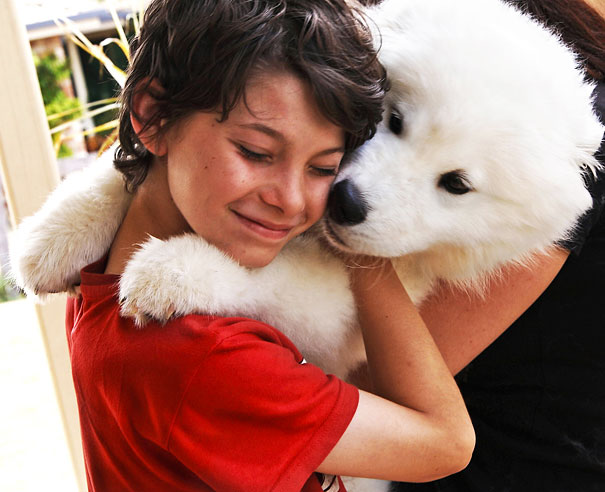 Cães fofos abraçando seus donos (10)