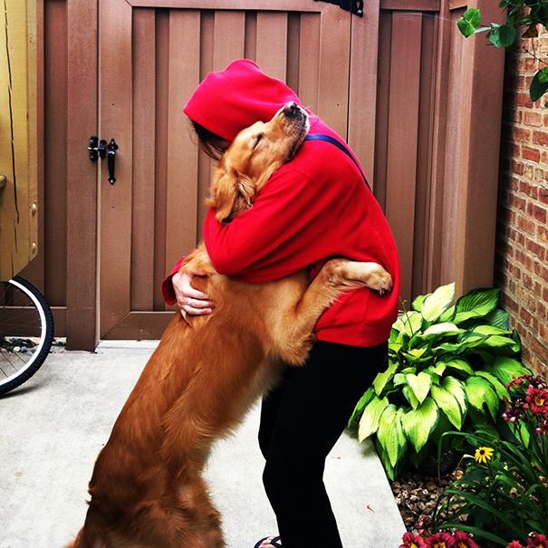 Cães fofos abraçando seus donos (14)