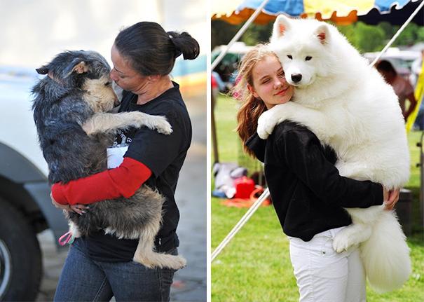 Cães fofos abraçando seus donos (17)