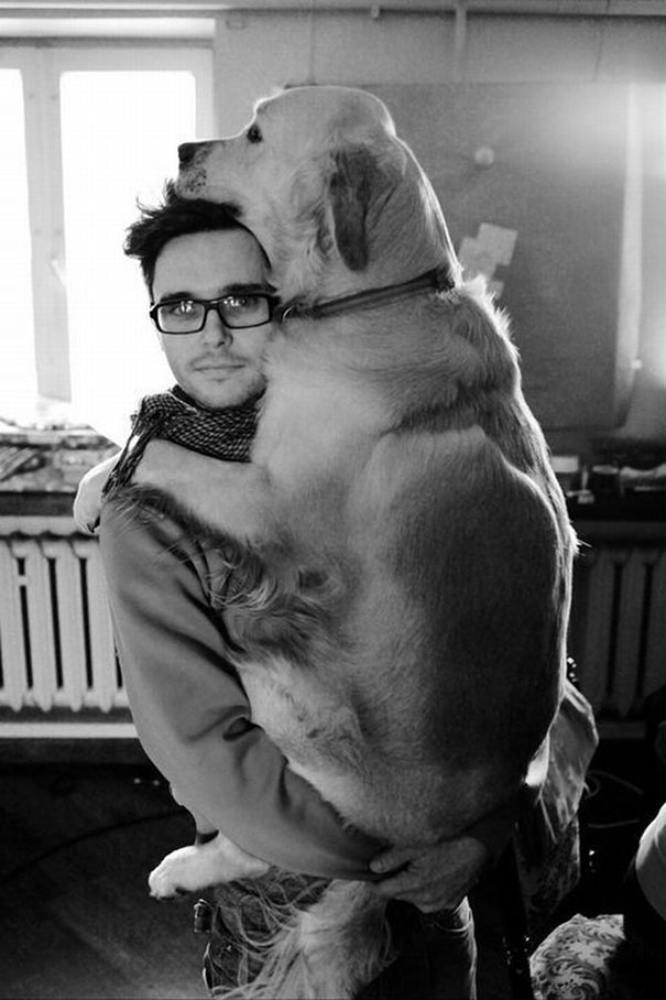 Cães fofos abraçando seus donos (21)