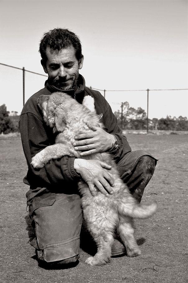 Cães fofos abraçando seus donos (8)