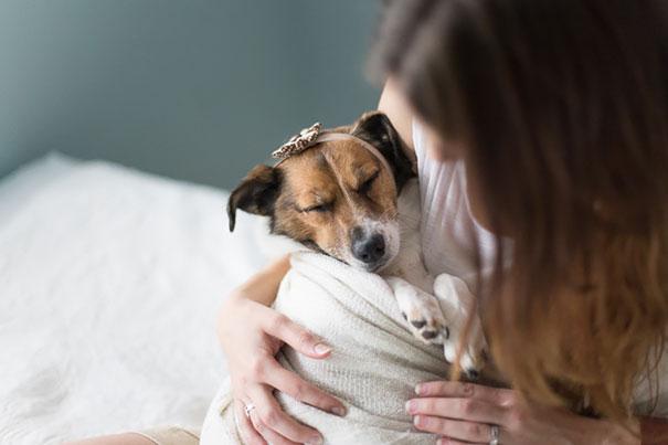 Casal faz um incrível book de recém nascido...com seu cão (1)