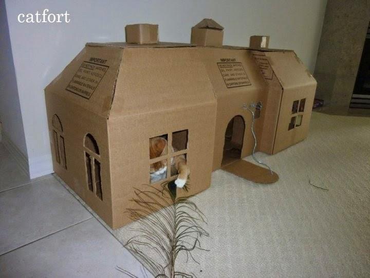 Esconderijos-mais-criativos-para-gatos-Blog-Animal (4)