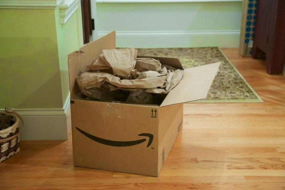 Esconderijos-mais-criativos-para-gatos-Blog-Animal (7)