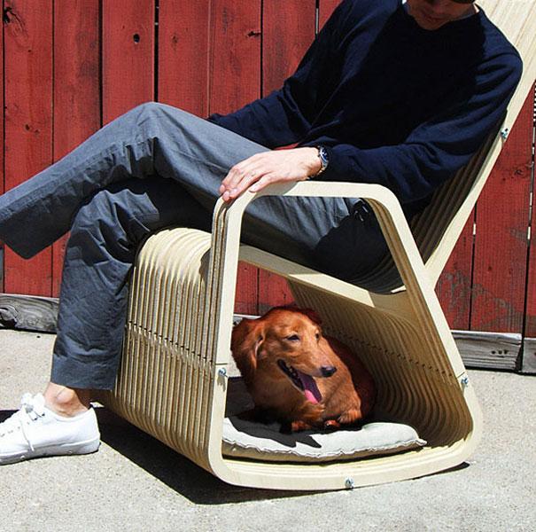 Ideias criativas para cachorros (4)