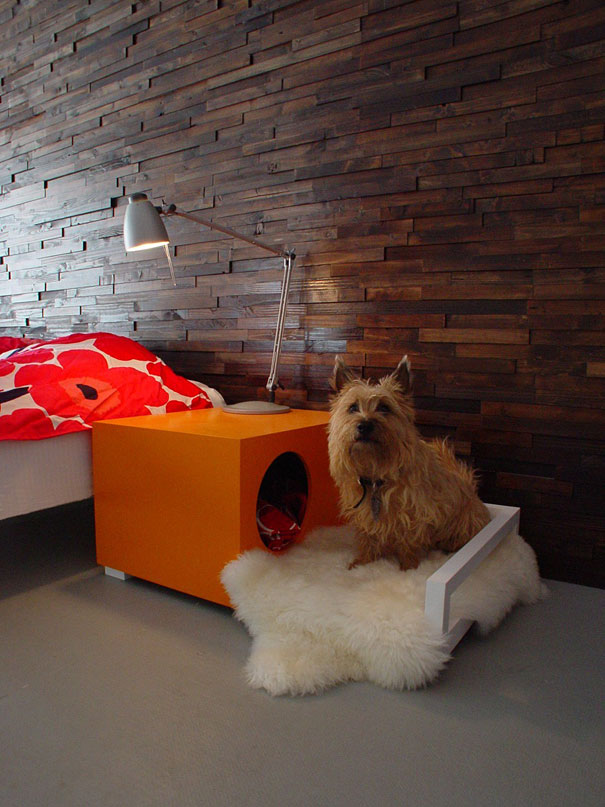 Ideias criativas para cachorros (5)