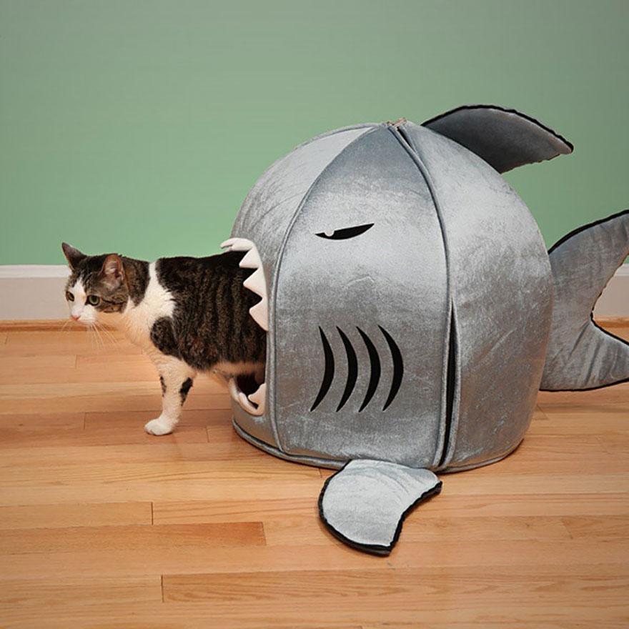 Mobília para amantes de gatos (1)