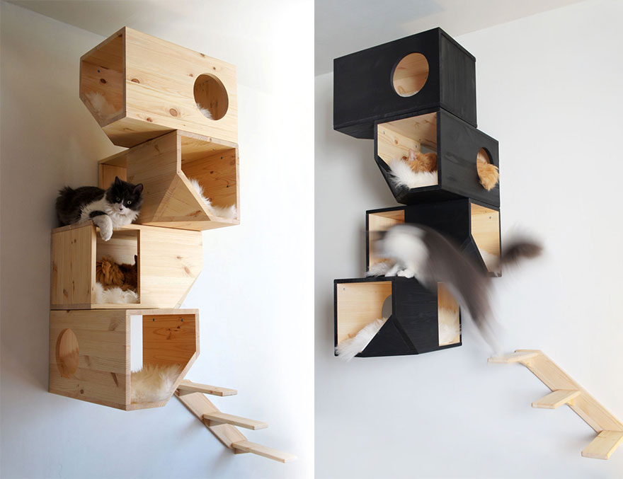 Mobília para amantes de gatos (14)