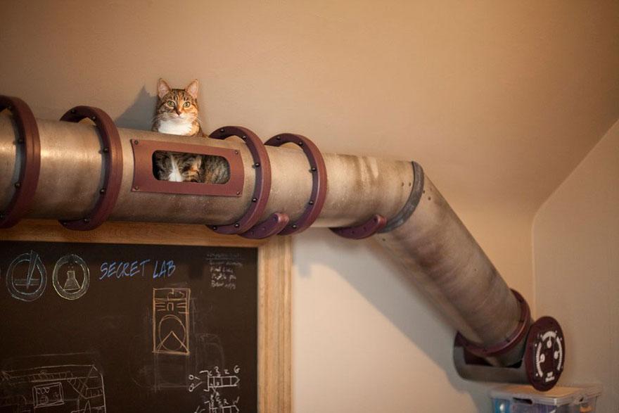 Mobília para amantes de gatos (16)