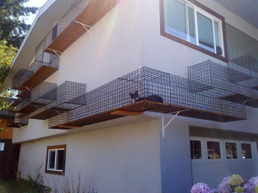 Mobília para amantes de gatos (22)