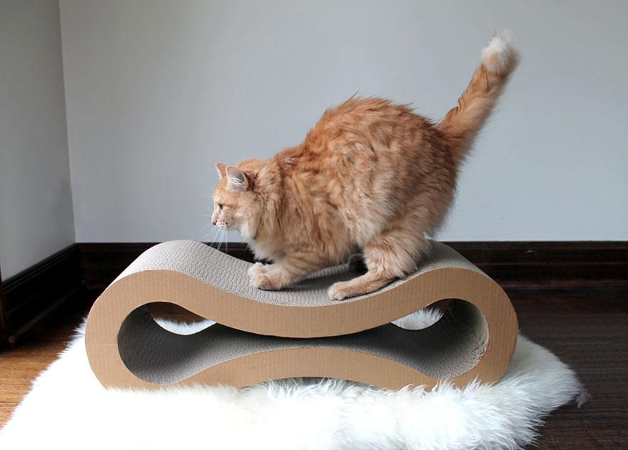 Mobília para amantes de gatos (23)