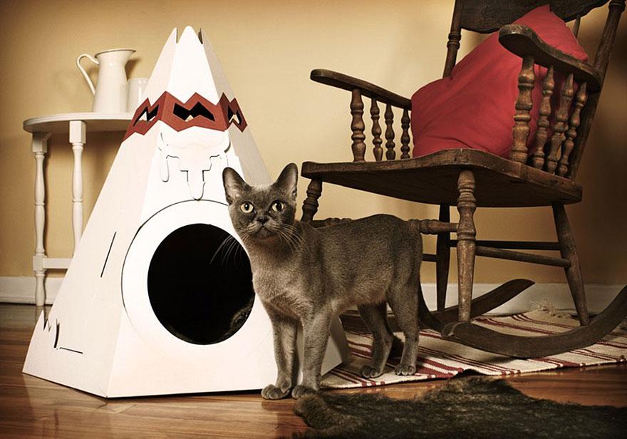 Mobília para amantes de gatos (26)