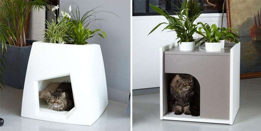Mobília para amantes de gatos (27)