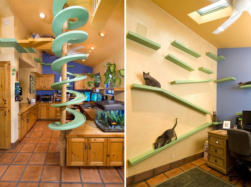 Mobília para amantes de gatos (33)