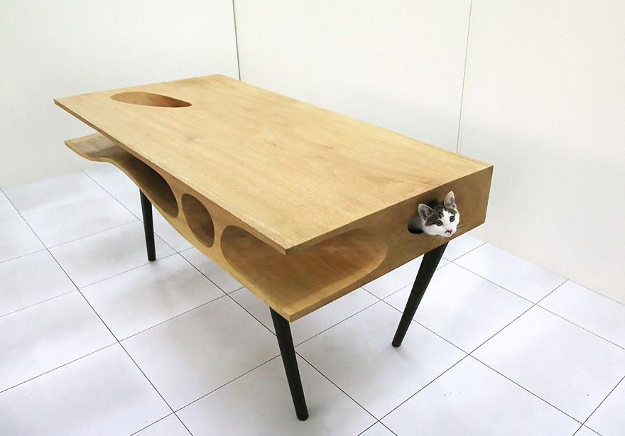 Mobília para amantes de gatos (4)