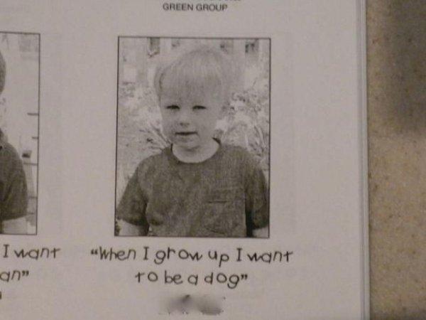 12-Provas-de-que-os-cachorros-são-iguais-a-crianças - Blog-Animal (13)