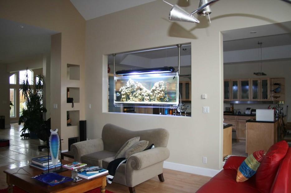 30-aquários-incríveis-que-ocê-gostaria de-ter-em-casa - Blog-Animal (11)
