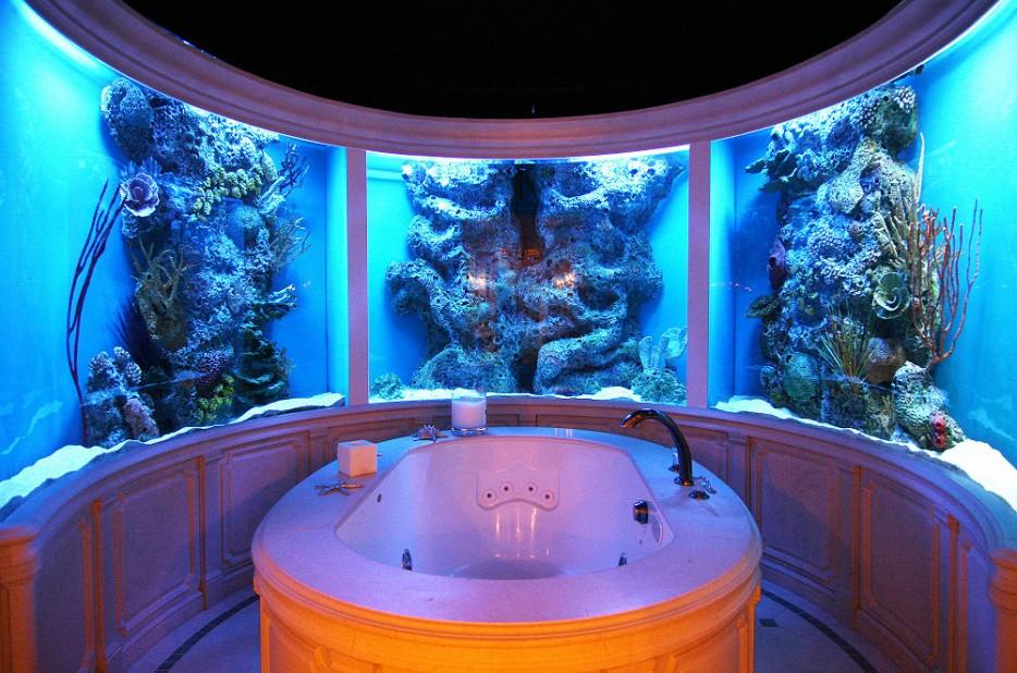 30-aquários-incríveis-que-ocê-gostaria de-ter-em-casa - Blog-Animal (12)