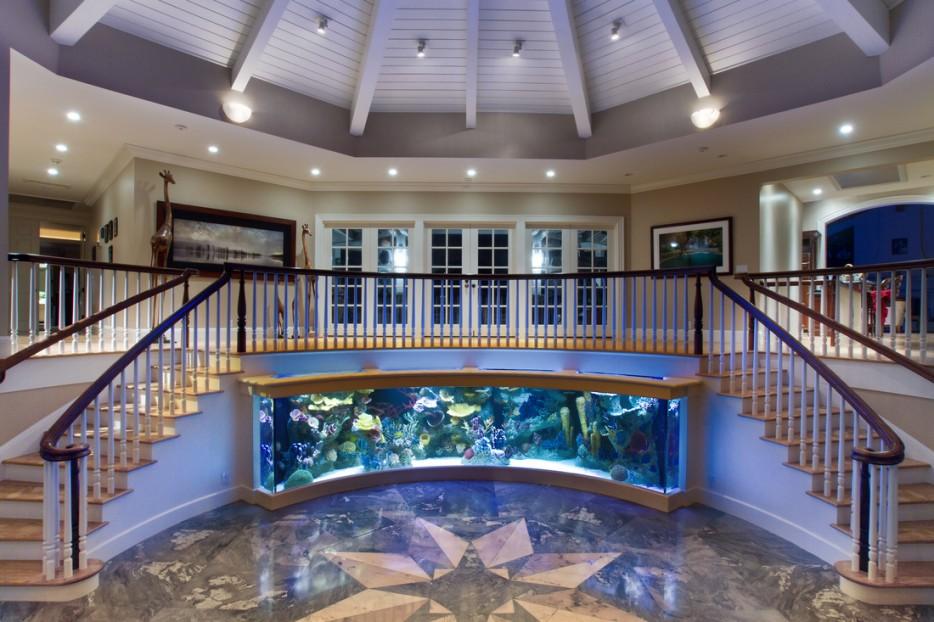 30-aquários-incríveis-que-ocê-gostaria de-ter-em-casa - Blog-Animal (16)