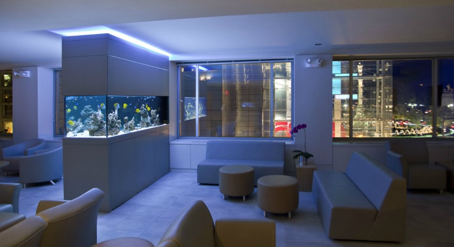 30-aquários-incríveis-que-ocê-gostaria de-ter-em-casa - Blog-Animal (18)