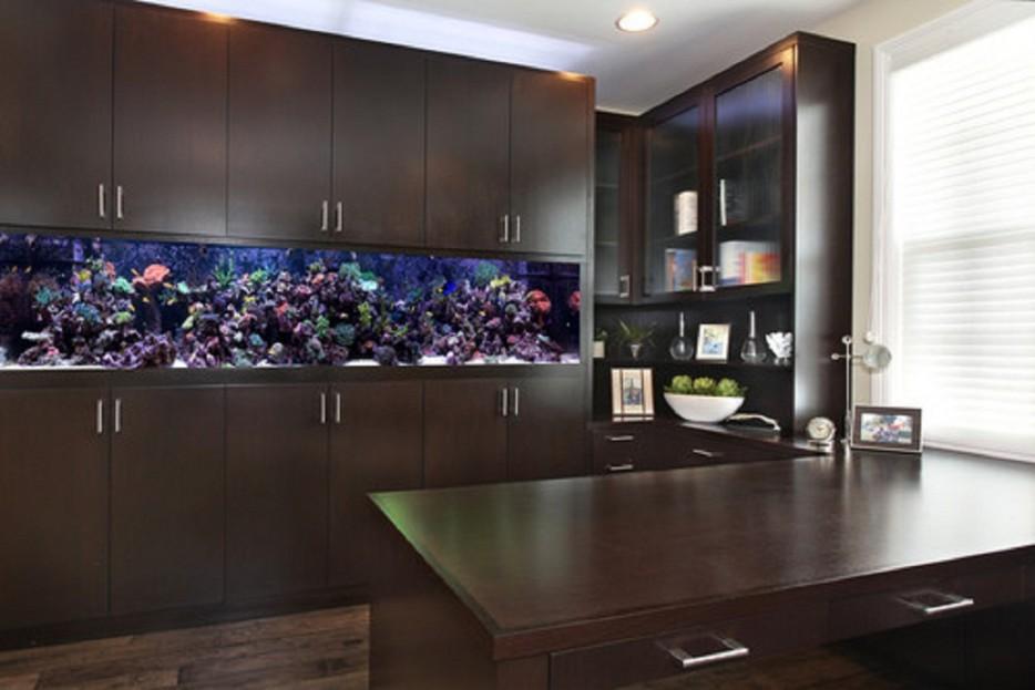 30-aquários-incríveis-que-ocê-gostaria de-ter-em-casa - Blog-Animal (2)