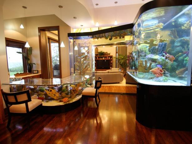 30-aquários-incríveis-que-ocê-gostaria de-ter-em-casa - Blog-Animal (25)