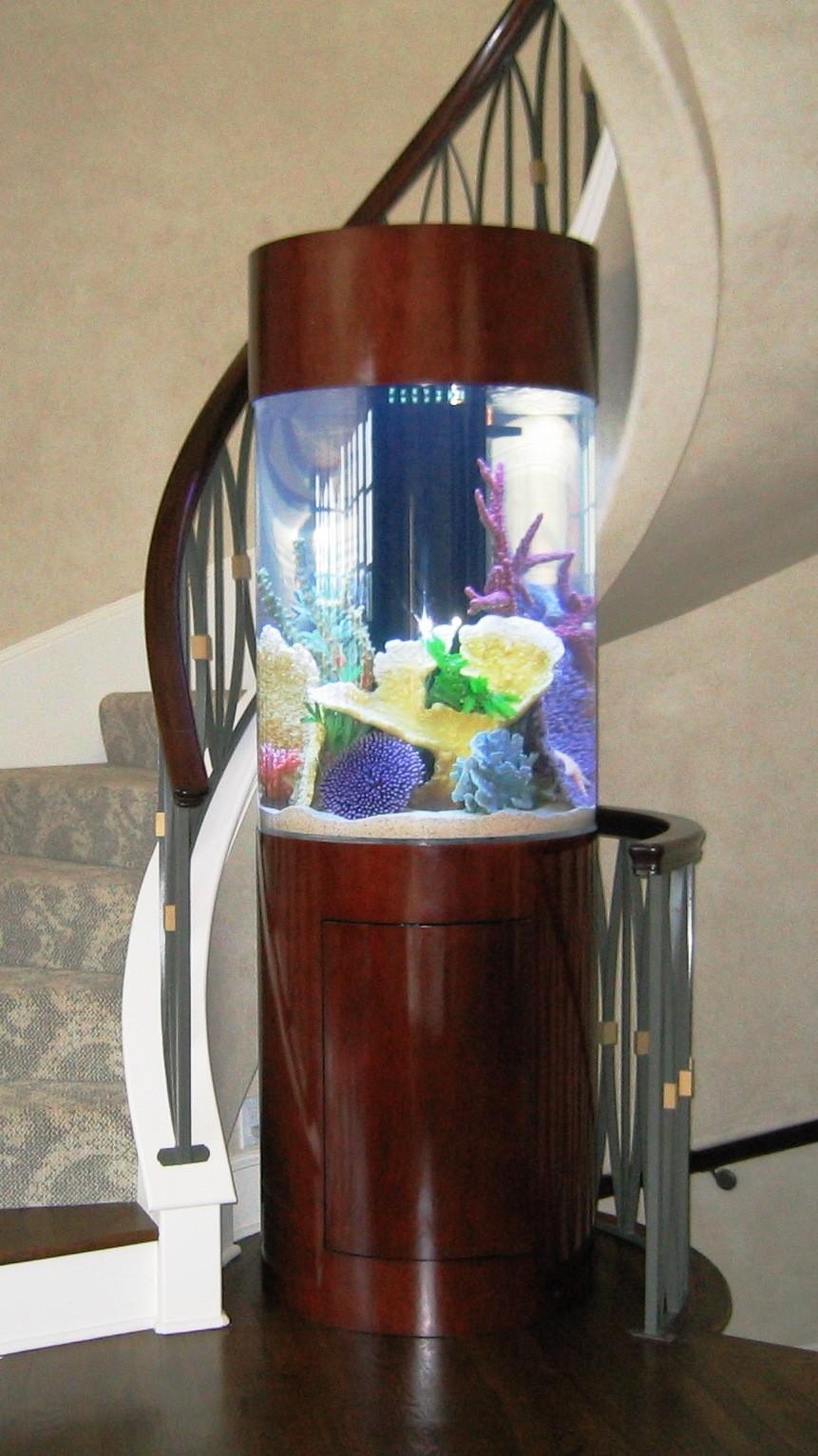 30-aquários-incríveis-que-ocê-gostaria de-ter-em-casa - Blog-Animal (29)