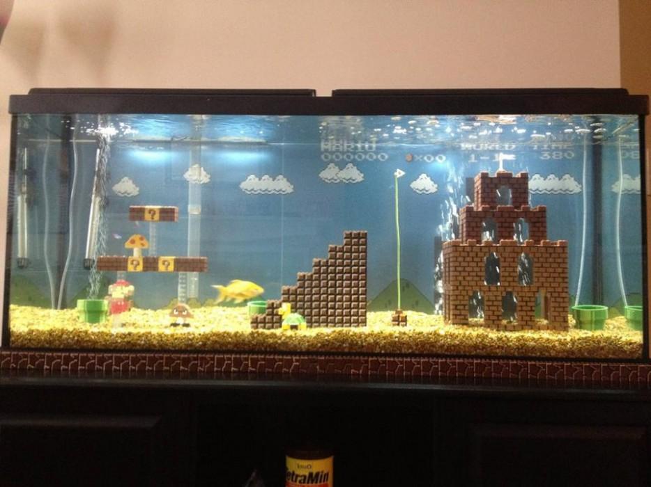 30-aquários-incríveis-que-ocê-gostaria de-ter-em-casa - Blog-Animal (3)