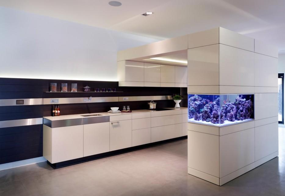 30-aquários-incríveis-que-ocê-gostaria de-ter-em-casa - Blog-Animal (4)