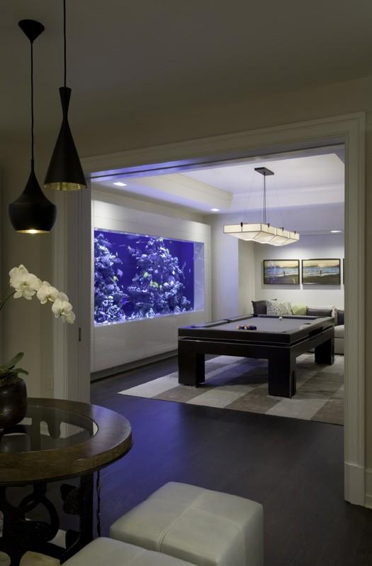 30-aquários-incríveis-que-ocê-gostaria de-ter-em-casa - Blog-Animal (8)