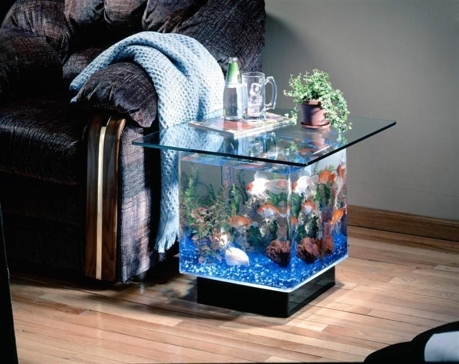 30-aquários-incríveis-que-ocê-gostaria de-ter-em-casa - Blog-Animal (9)
