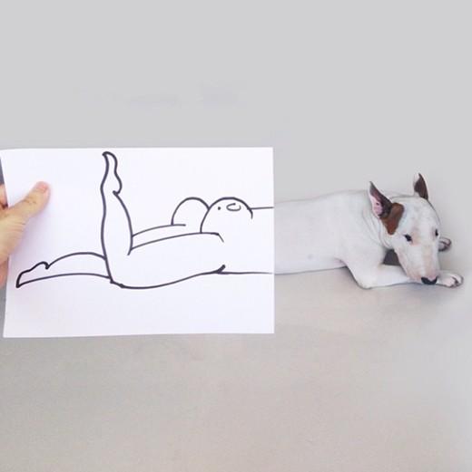 Artista-cria-divertidas-ilustrações-com-seu-cão-interagindo-nelas-Blog-Animal (1)