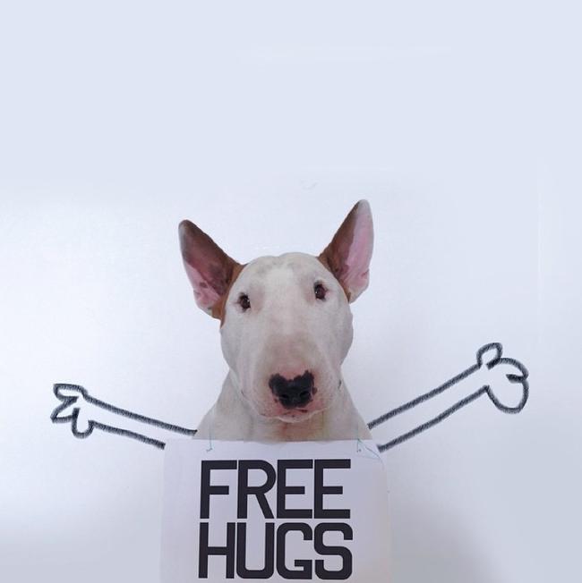 Artista-cria-divertidas-ilustrações-com-seu-cão-interagindo-nelas-Blog-Animal (12)
