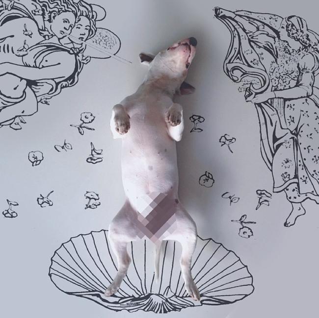 Artista-cria-divertidas-ilustrações-com-seu-cão-interagindo-nelas-Blog-Animal (6)