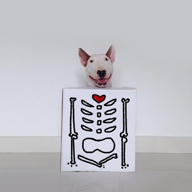 Artista-cria-divertidas-ilustrações-com-seu-cão-interagindo-nelas-Blog-Animal (7)