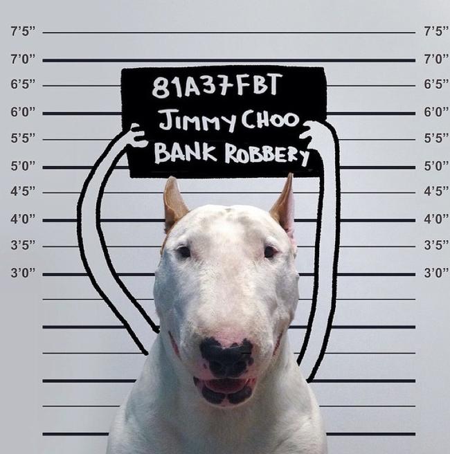 Artista-cria-divertidas-ilustrações-com-seu-cão-interagindo-nelas-Blog-Animal (9)