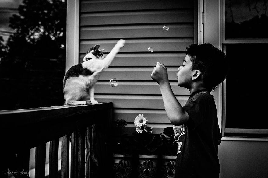 Fotos de crianças brincando com seus gatos (10)