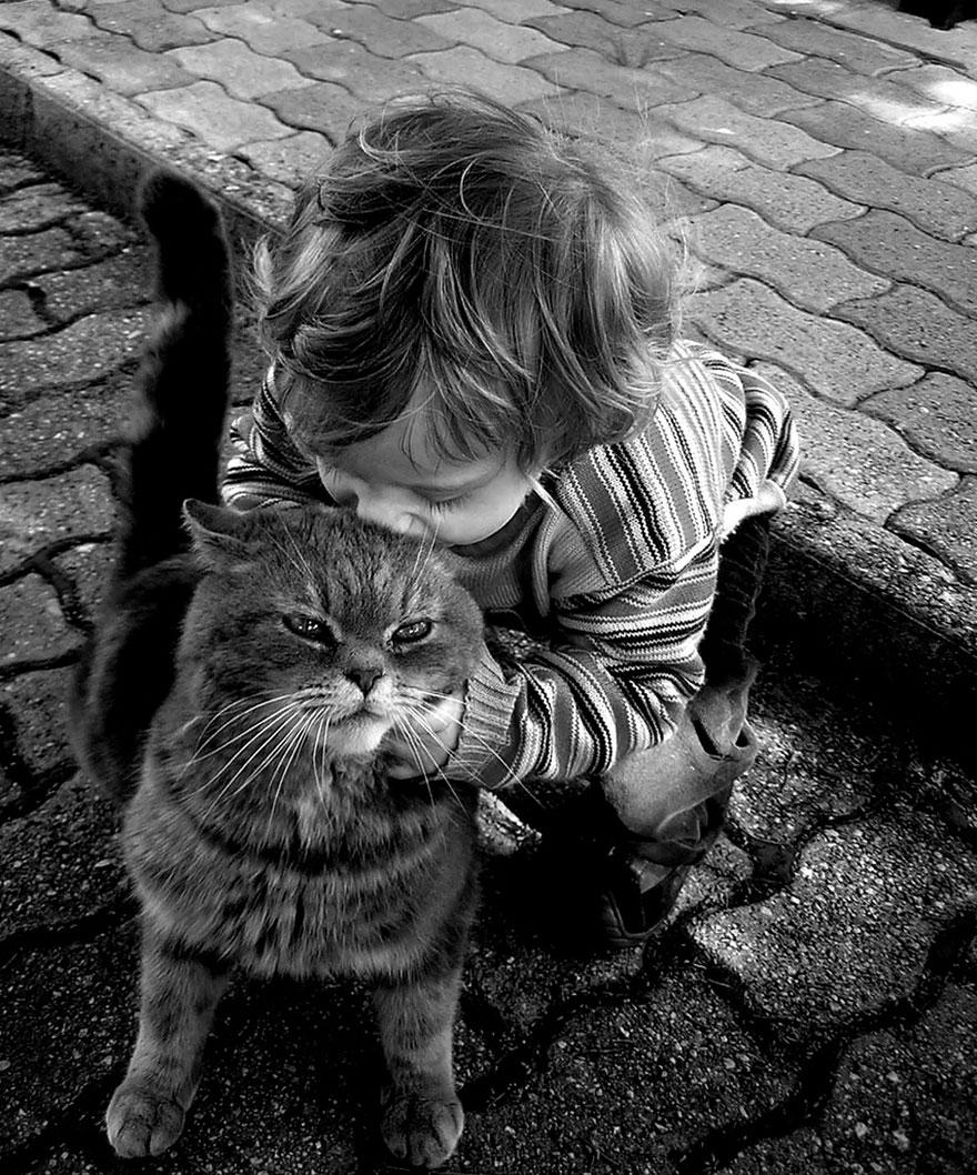 Fotos de crianças brincando com seus gatos (17)