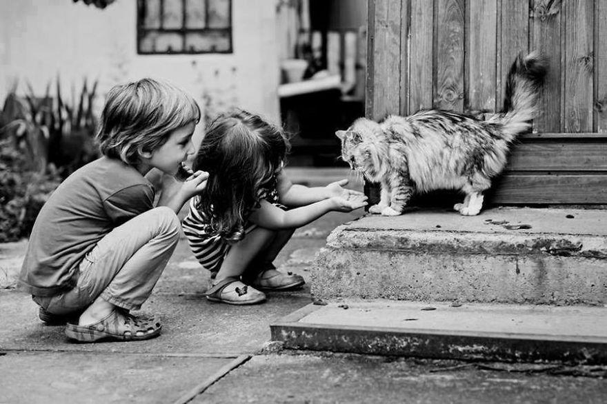 Fotos de crianças brincando com seus gatos (5)