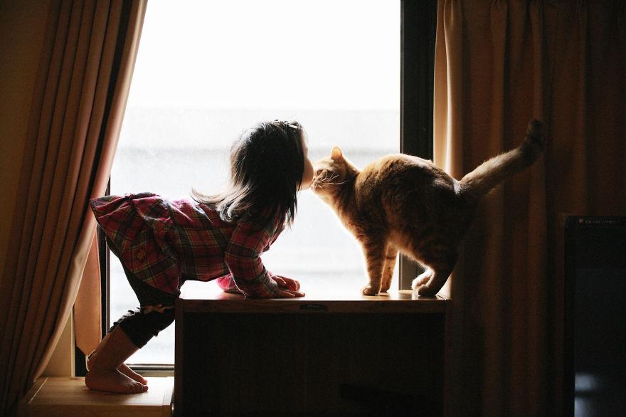 Fotos de crianças brincando com seus gatos (7)