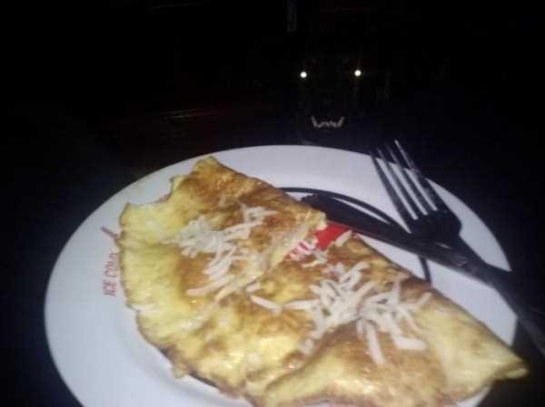 Cães-e-gatos-que-precisam-desesperadamente-de-atenção-Blog-Animal (11)