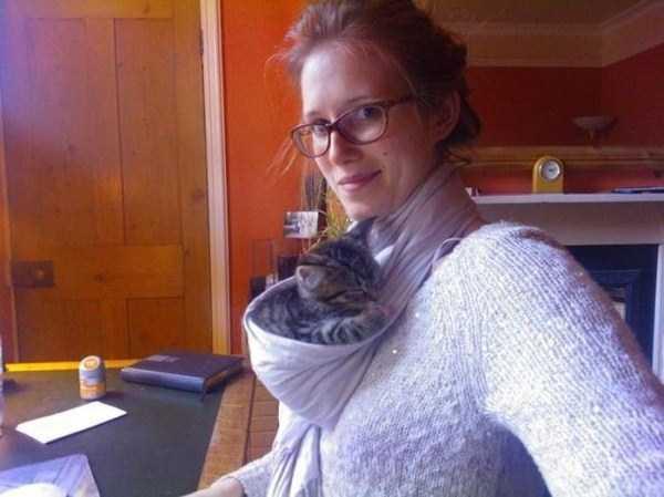 Cães-e-gatos-que-precisam-desesperadamente-de-atenção-Blog-Animal (4)