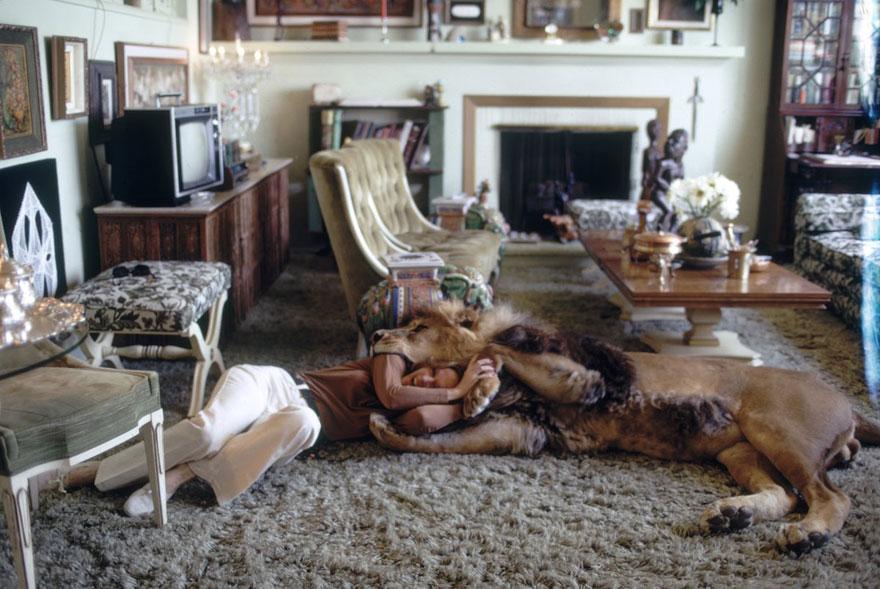 Esta família vivia com um Leão em 1971 (5)