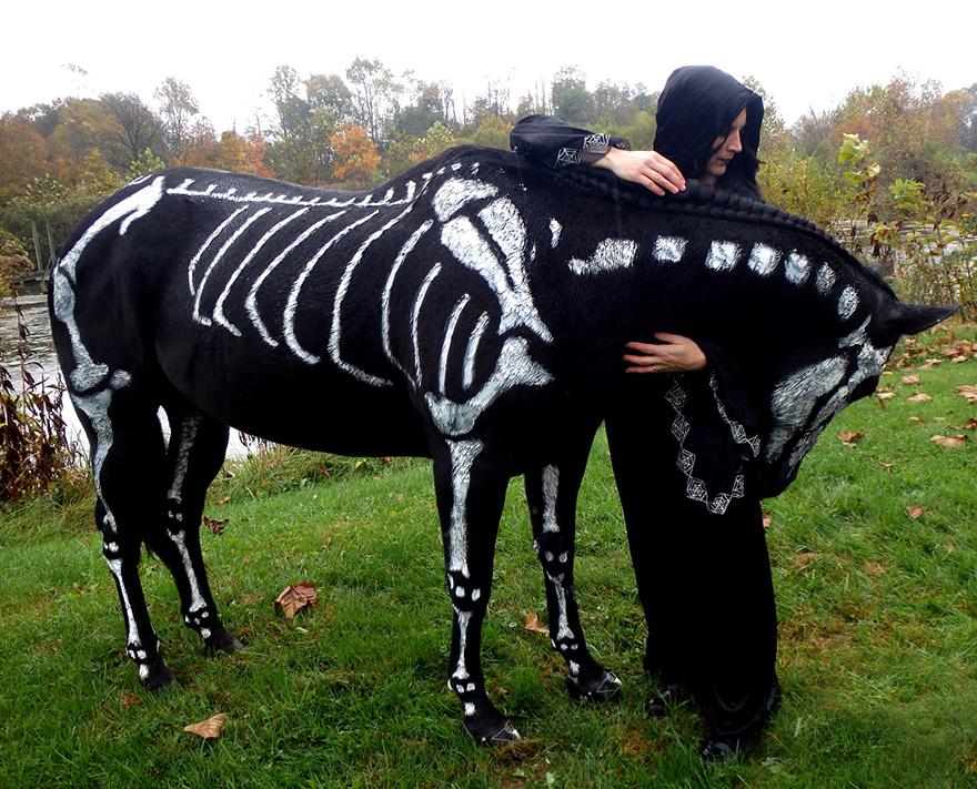 Uso não-tóxico de pintura para transformar animais esqueletos assustadores para o Halloween (8)