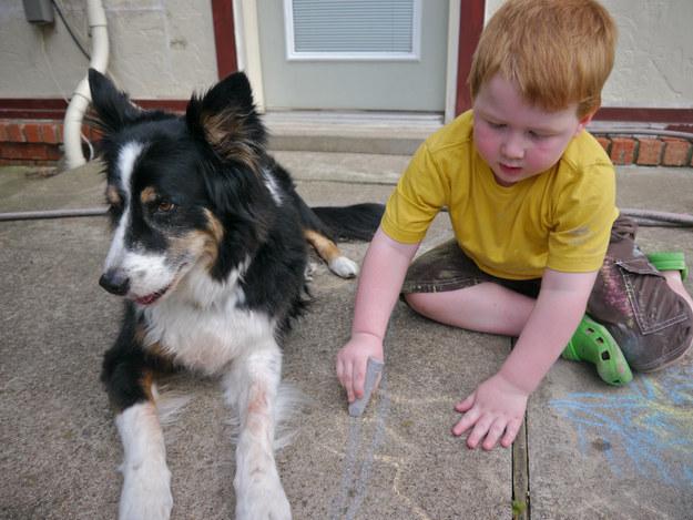 21-Razões-pelos-quais-você-deve-ser-grato-ao-seu-cachorro-Blog-Animal (11)